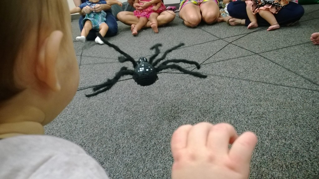 spider web music activity