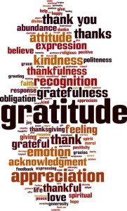 Gratitude word cloud concept.